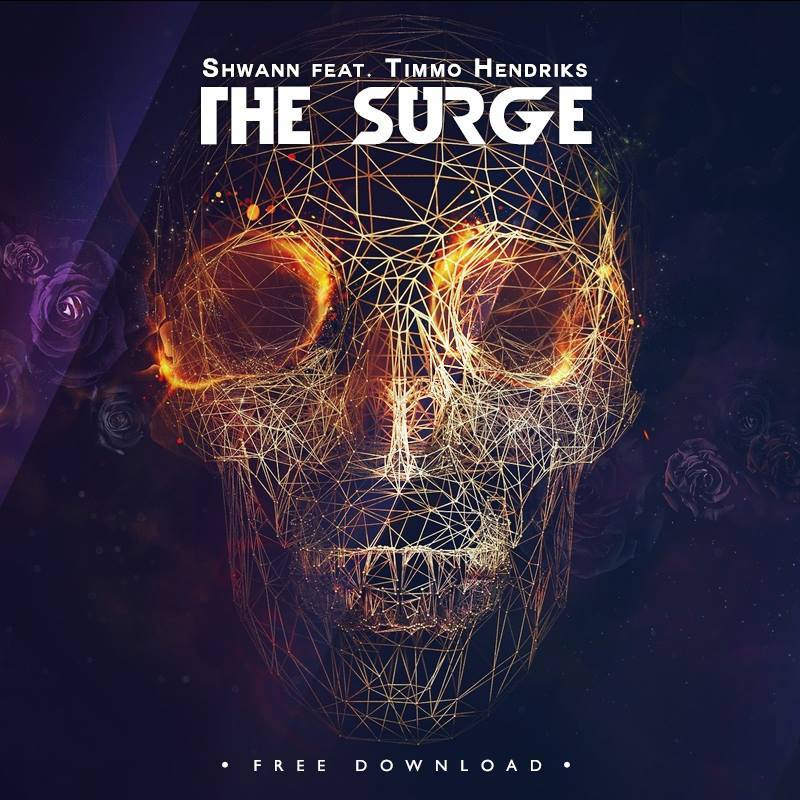 Shwann & Timmo Hendriks - The Surge