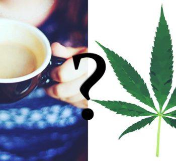 marihuana y cafeina