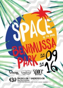 Space in The Park Flayer