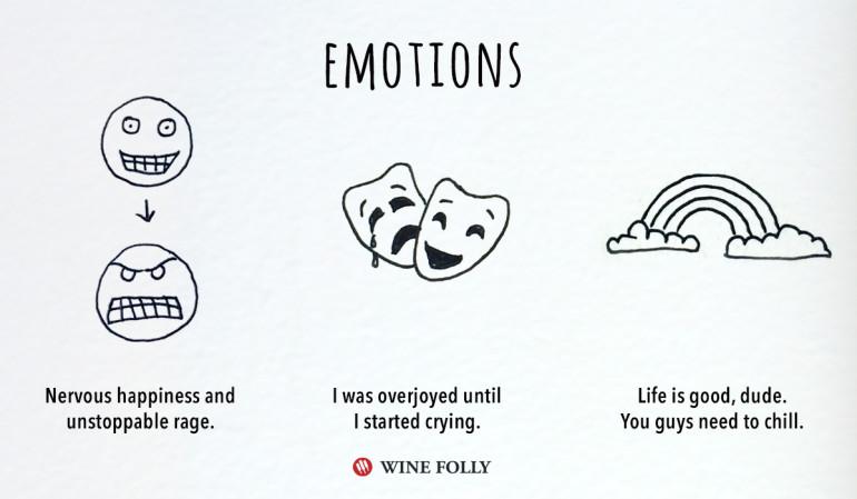 Wine Folly1
